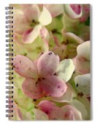 Romance In Pink And Green Spiral Notebook