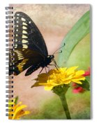 Romanced Spiral Notebook