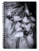 Romantic Island Iris In Black And White Spiral Notebook