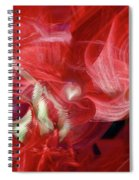 Romantic Love Spiral Notebook