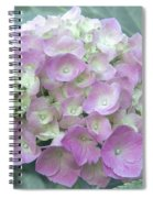 Romantic Pink Hydrangea Spiral Notebook