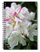 Romantic Rhododendron Spiral Notebook