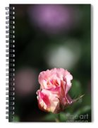 Romantic Rose Bud Spiral Notebook
