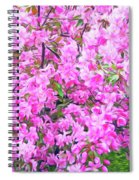 Romantic Skies Apple Blossoms  Spiral Notebook