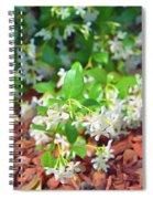 Romantic Skies Jasmine In Bloom Spiral Notebook