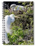 Rookery Family Spiral Notebook