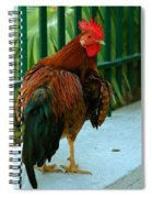 Rooster By The Fence Spiral Notebook