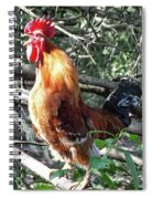 Rooster Crowing Spiral Notebook