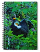 Rooster Grouse Posing Spiral Notebook