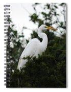 Roosting Egret Spiral Notebook