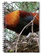 Roosting In San Juan Spiral Notebook