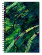 Root Canal Spiral Notebook