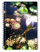 Root Of Beauty Spiral Notebook
