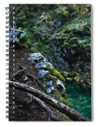 Rooted In Emerald  Spiral Notebook