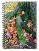 Roots And Leaves Spiral Notebook