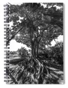 Roots To Roof Spiral Notebook