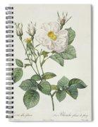 Rosa Alba Foliacea Spiral Notebook