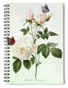 Rosa Bengale The Hymenes Spiral Notebook