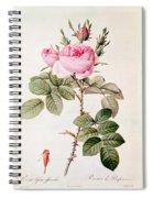 Rosa Bifera Officinalis Spiral Notebook