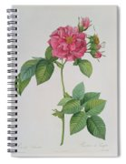 Rosa Turbinata Spiral Notebook