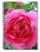 Rosa Zephrine  Spiral Notebook