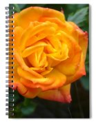 Rose - Irish Eyes Spiral Notebook