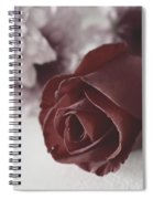 Rose #006 Spiral Notebook