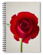 Rose #022 Spiral Notebook