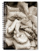 Rose After The Rain Spiral Notebook