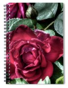 Rose And Bud Spiral Notebook