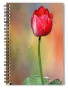 Red Tulip At Sunset By Kaye Menner Spiral Notebook