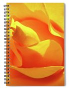 Rose Bright Orange Sunny Rose Flower Floral Baslee Troutman Spiral Notebook