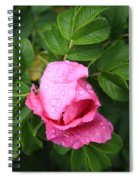 Rose Bud And Bee Spiral Notebook
