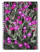 Rose Campion Spiral Notebook