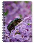 Rose Chafer On Lilac Spiral Notebook