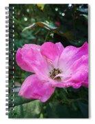 Rose Dew Spiral Notebook