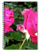 Rose Duo Spiral Notebook
