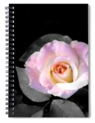 Rose Emergance Spiral Notebook