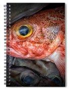 Rose Fish Spiral Notebook