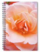 Rose Floral Art Print Peach Pink Roses Garden Canvas Baslee Troutman Spiral Notebook