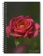 Rose Fragrance Spiral Notebook