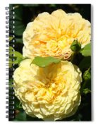 Rose Garden Floral Art Print Yellow Roses Canvas Baslee Troutman Spiral Notebook