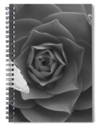Rose In Black Spiral Notebook