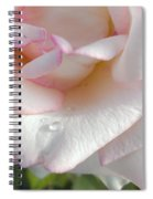 Rose In The Morning Sun Spiral Notebook