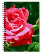 Rose Is Its Name Spiral Notebook