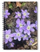 Rose Lake Beauties Spiral Notebook
