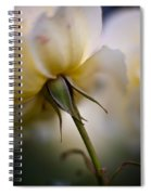 Rose Nuances Spiral Notebook