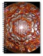 Rose Of Life Copper Lightmandala Spiral Notebook