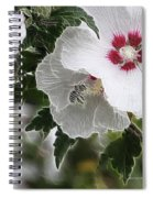Rose Of Sharon And Bee Spiral Notebook