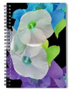 Rose Of Sharon Painted Spiral Notebook